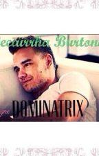 Dominatrix (Liam Payne) by Leeairrha