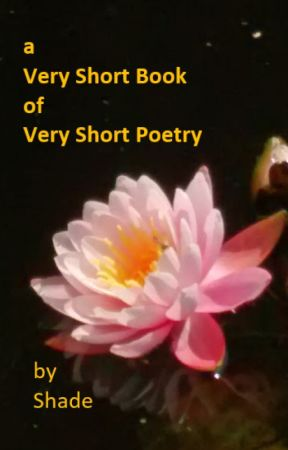 A Very Short Book of Very Short Poetry by Shade9000
