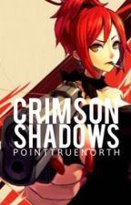 Crimson Shadows|Levi x Assassin Reader|Attack on Titan (on hold) by PointTrueNorth