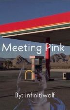 Meeting Pink by infinitiwolf