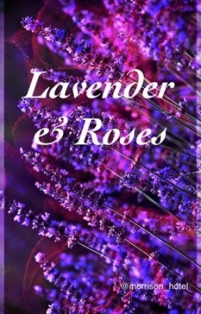 Lavender & Roses by morrison_hotel