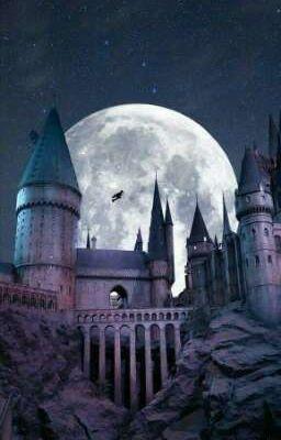 [BH-ĐN-HARRY POTTER] Xuyên Qua Làm Em Gái Harry Potter!![Phần 4]