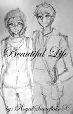Beautiful Life {One shot Jelsa fanfic} by Mikoto-Emi