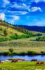 De la nécessité de contempler la nature by nathalie24242
