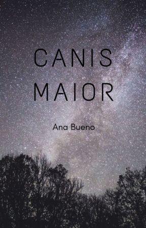 canis maior by annrandano