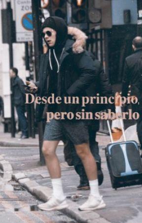 Desde un principio • Harry y Louis.  by only2kiwi