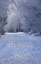 Winter's Trail by stormvisions