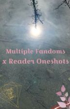 Multiple Fandom x Reader Oneshots by Nello808