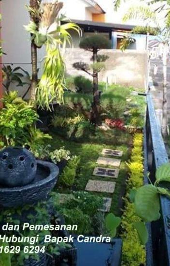 Wa 0822 1629 6294 Pembuatan Taman Rumah Minimalis Rofik