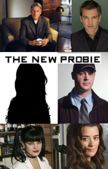 The New Probie (an NCIS Fanfiction)