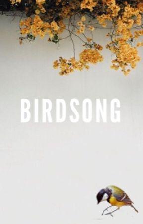 birdsong   shyland by stardustshyland