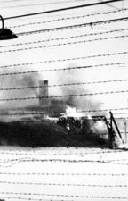 Photos Of The Holocaust by YaelReider29