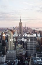 New York City 2018 | ✔️ by kiramekuai