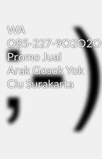 WA O85-227-9O2O2O Promo Jual Arak Gosok Yok Ciu Surakarta by Distributor