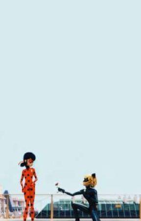 Miraculous Ladybug Zodiacs by Galaxywings5