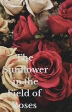 The Sunflower in the Field of Roses  by queenill