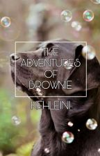 The Adventures Of Brownie by otormoto
