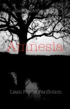 Amnesia - A Liam Payne Fanfiction by thescentofspring