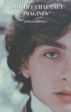timothée chalamet imagines :) by thereallifelyra