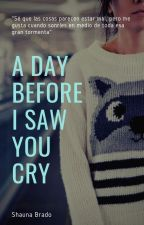 A day before i saw you cry by ShaunaBrado