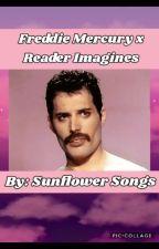 Freddie Mercury x Reader Imagines by songofthesunflowers