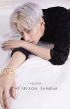 THE REASON: BamBam X Reader   by xelkim