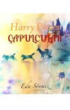 Harry Potter ÇAPULCULAR by edapotter