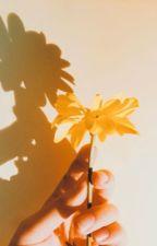 SUNSHINE by sweetsunshines
