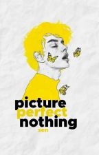picture perfect nothing by sensibilia