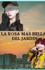La rosa mas bella del jardín by julyrod2008