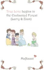 True Love begins in the Enchanted Forest (Larry & Ziam) by mafkaast