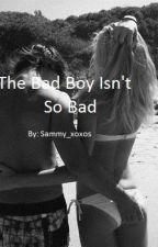 The Bad Boy Isn't So Bad by sammy_xoxos
