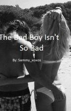 The Bad Boy Isn't So Bad by sammy_xoxos