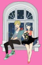 Miraculous ladybug: extremely nice. by teverittt