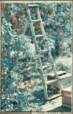 𝐄𝐏𝐇𝐄𝐌𝐄𝐑𝐀𝐋 ϟ art book by guccistarks