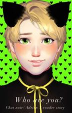 Who are you? Chat noir/ Adrien X reader story by littleLuckyLuver