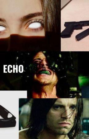 Echo ~ Bucky x Reader by bbuckyxbarnes