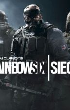 Rainbow Six Siege x Reader Oneshots by Kazdy4