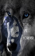 You...Me...Forever [COMPLETED!] by MissBlackDiamond