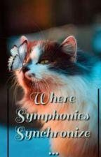 Where Symphonies Synchronize... by x_kRi_x