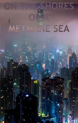 On the Shores of a Methane Sea