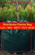TERLARIS !!, CALL / WA : 0877-1521-8546, Grosir Planter Bag Hitam by PabrikKantongTanaman