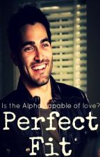 Perfect Fit (Derek Hale Fanfiction Book #1) by salvachesterhale