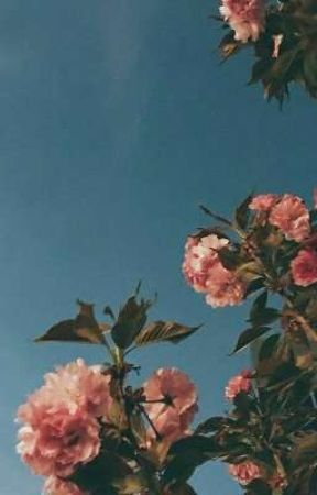 sun flower - yoonseok by HORNSEOK