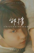 chrysanthemum | soobin by hyuunkai