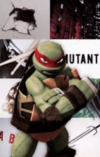 TMNT x Reader Raphael [ complete ] by Nyx_Magis
