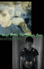 Keep It on the down low-Sam and Colby by FlarrowXMJN