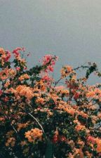 poemas rotos by lwtobrien