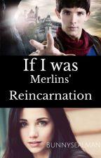 If I was Merlin Reincarnation by Bunnysealman