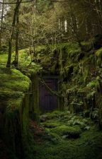 Perdidos na floresta by claraflores092